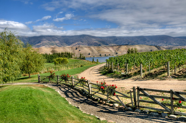 Northburn Station Vineyards