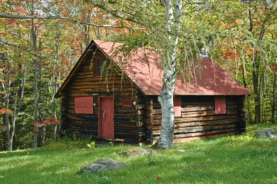 Cabin and Birch