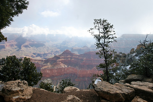 At the rim; Grand Canyon, AZ