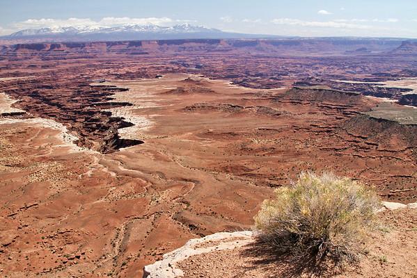 Canyonlands National Park; Moab, Utah