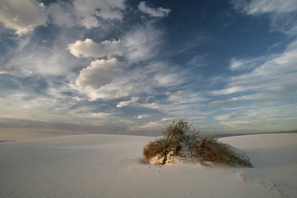 White Sands National Monument; New Mexico