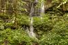 Waterfalls in Roaring Fork 1