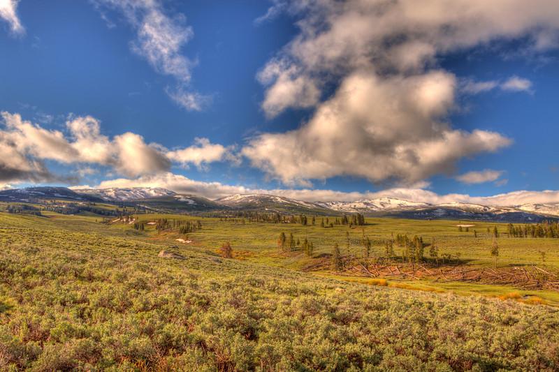 Blacktail Plateau landscape