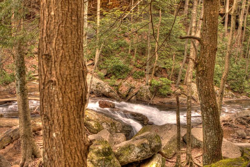 Cucumber Falls Down Stream