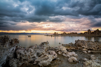 After the storm at South Tufa