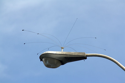 Antennas on streetlight