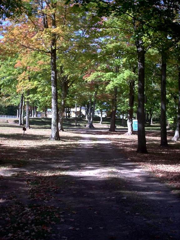 <b>Jackson Park</b>