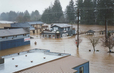The flood of February 1996 brought water higher than old timers could recall.
