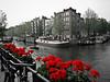 090628_AmsterdamCanals_013