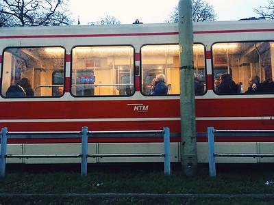 Main form of transportation
