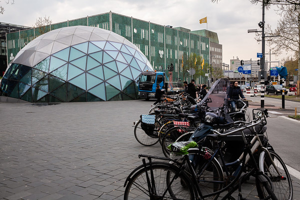 2019_April Netherlands -Kekuenhof & Eidenhoven-4290