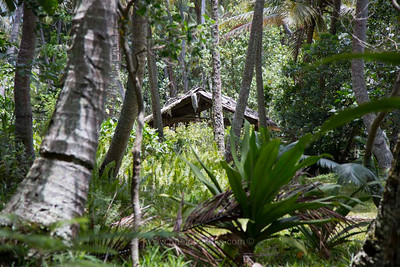 Hidden shack. Poindimie, New Caledonia.