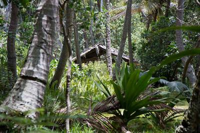Hidden shack. Poindimie, New Caledonia.
