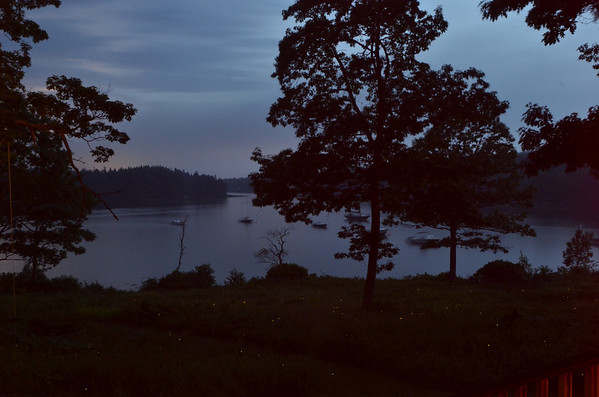 Fireflies and lightning, Independence Day 2012.