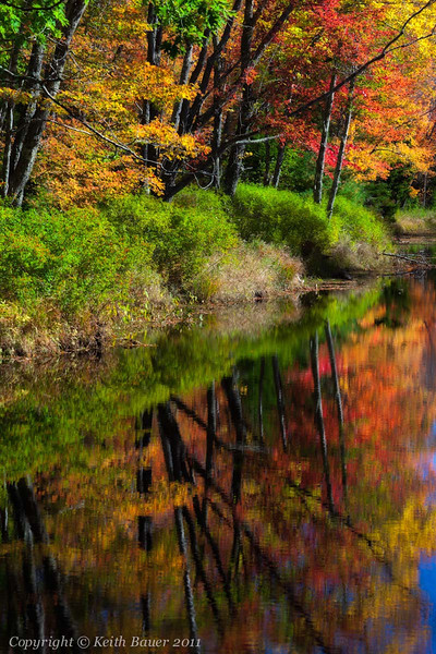 Fall along the River #3