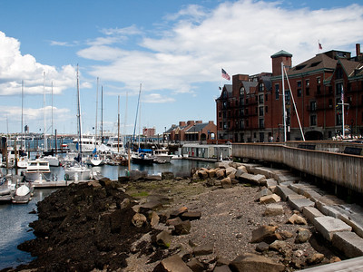 Low tide in Boston