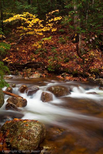 New England Stream