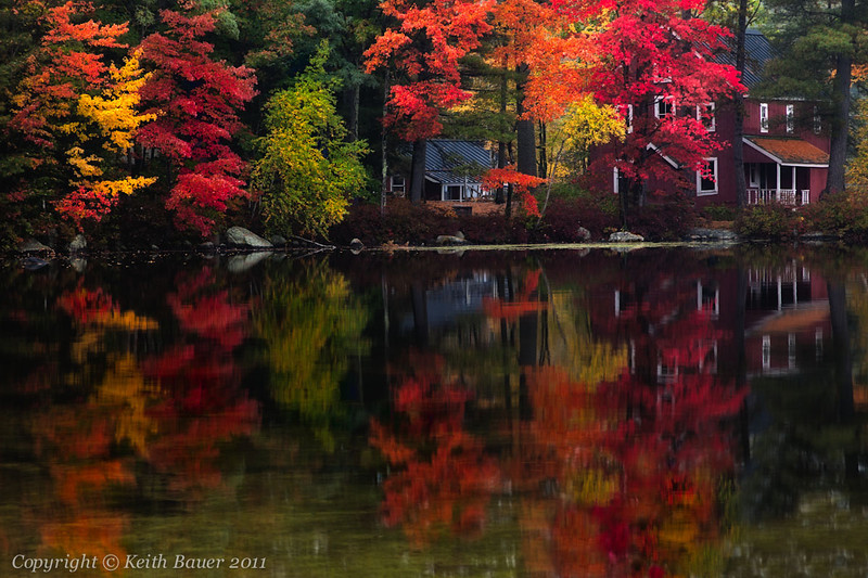 Reflections of Fall #2