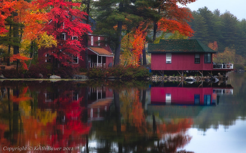 Reflections of Fall #1