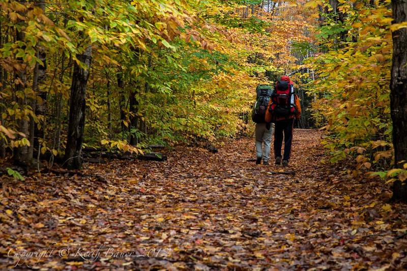 Hikers enjoying a beautiful Fall Trail