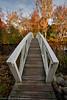 Foot Bridge Number 2