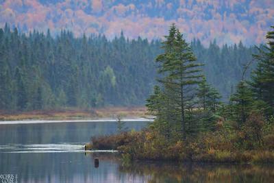 New Hampshire 2010