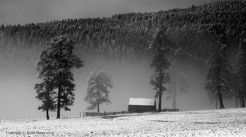 Valles Caldera on a foggy - snowy morning