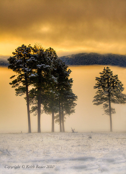 Valles Caldera Sunrise in the Fog Number 2