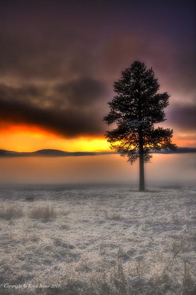 Valles Caldera Sunrise in the Fog