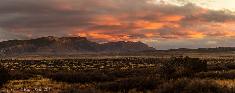 Desert Pano