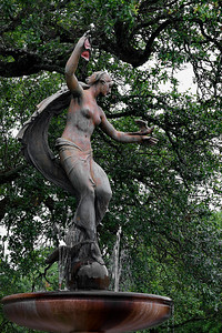 Audubon Park - Sophie Liberated from Bra