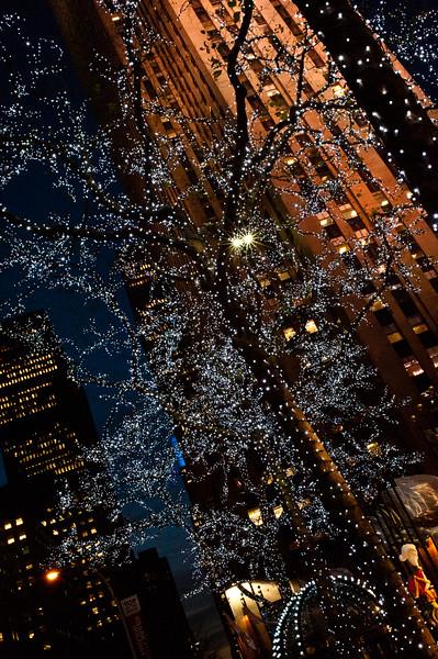Holiday Lights at Rockefeller Center