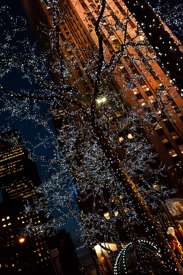 Holiday Lights at Rockefeller Center