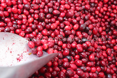 Cranberries at Union Square Market, New York, NY