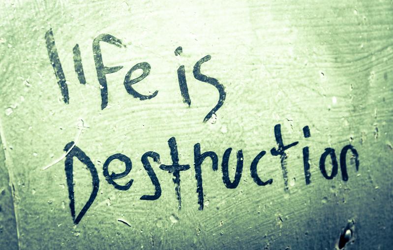 Life is Destruction