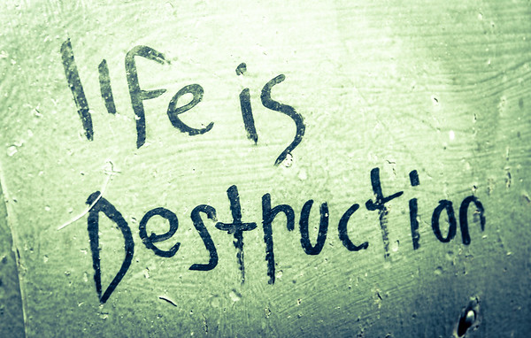 Life is Destruction