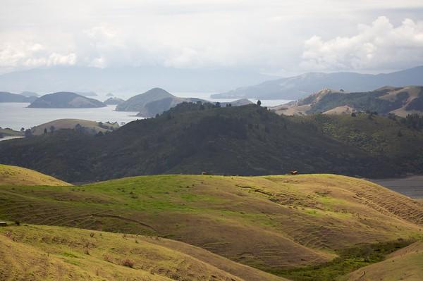 Highway Overlook, Coromandel Peninsula