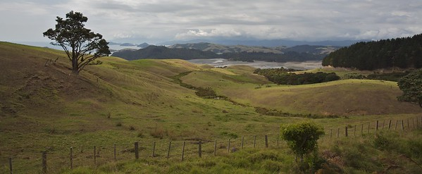 Highway Overlook, Coromandel Peninsula