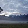 Morning Mist.