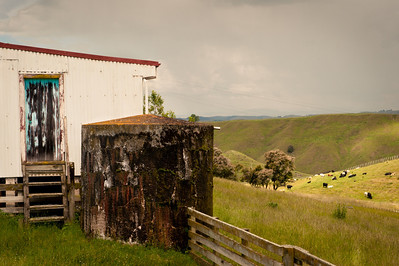 Old water tank, New Zealand Farm