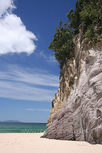 Te Ananui, Coromandel Peninsula, New Zealand