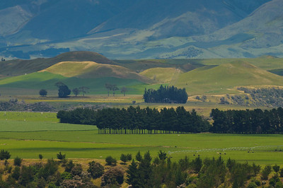 Beautiful countryside near Hawkes Bay, New Zealand
