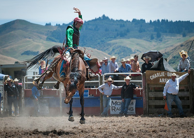 Rodeo, North Canterbury, New Zealand
