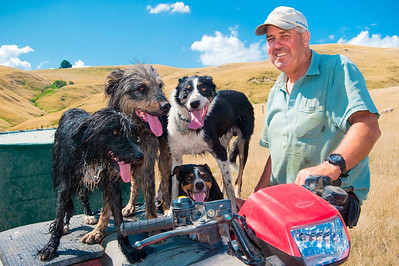 Station Manager, Sheep Station, North Island, New Zealand