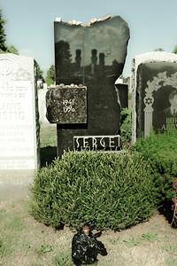 Sergei Dovlatov tomb