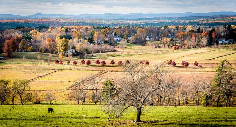 Autumn Splendor at Gibbet Hill