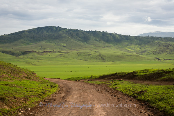 Entering Ngorongoro Crater