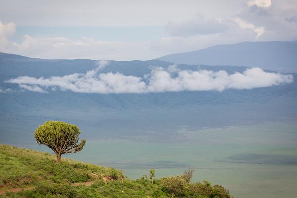 Edge of the Ngorongoro Crater