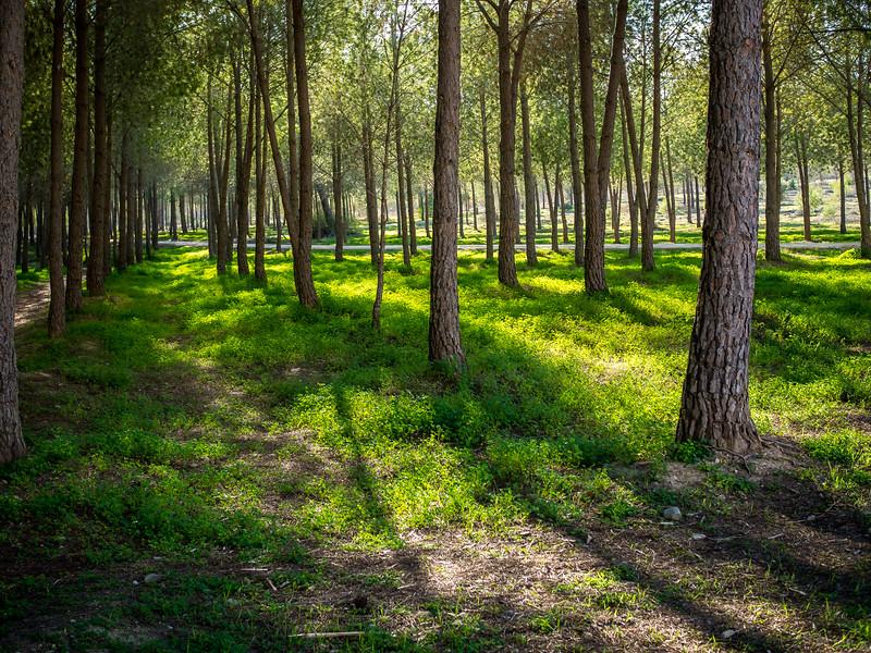 Akadimias Park