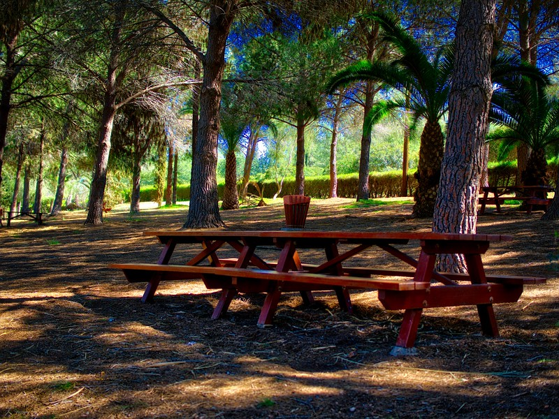 Picnic zone in Athalassa